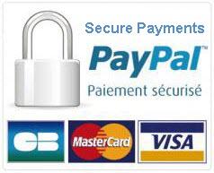 Paiement sécurisé - Paypal